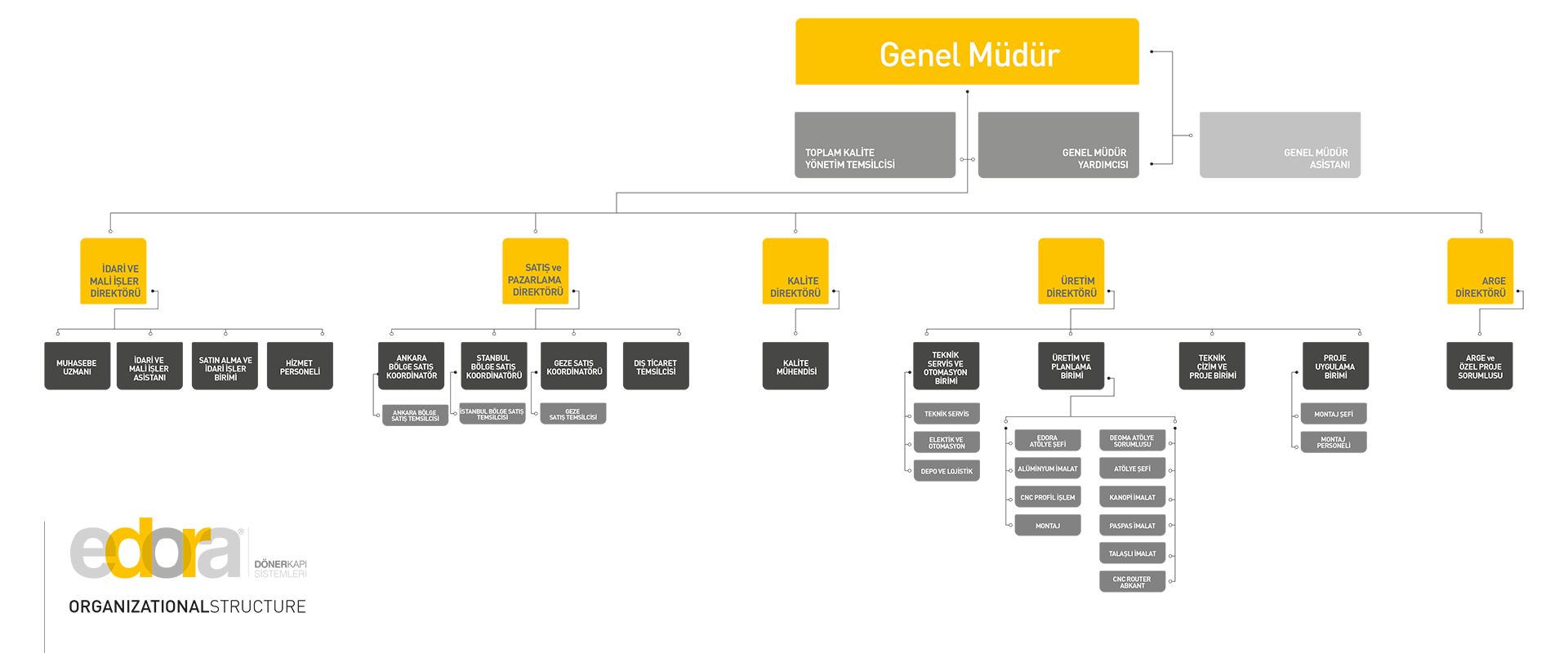 Edora - Organizasyon Şeması